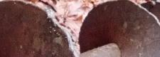 cropped-DSC_00551-672x240
