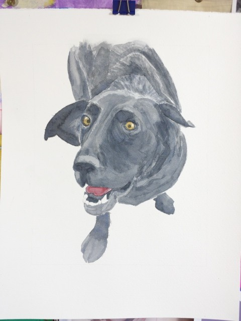 Dog portrait, watercolour on paper