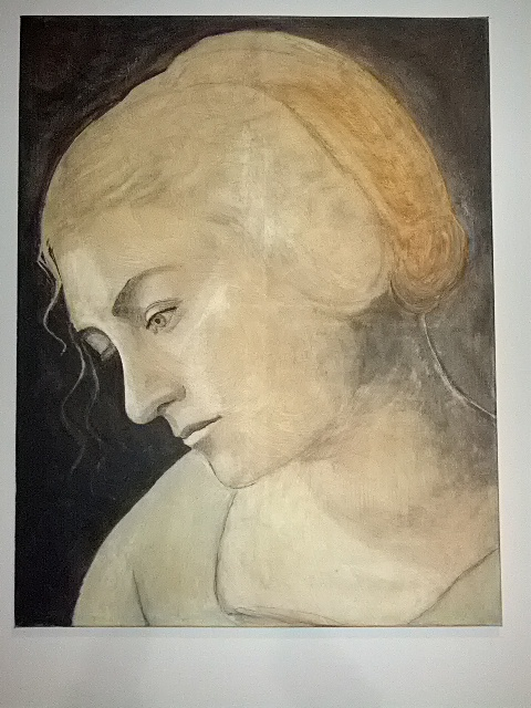 Da Vinci inspired head of a woman